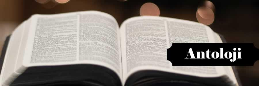 En İyi, Çok Satan, Okunan, Okunması Gereken, Güzel, Ünlü, Popüler, Ucuz, İndirimli, Yeni ve Son Çıkan Edebiyat Antoloji Kitapları satın al