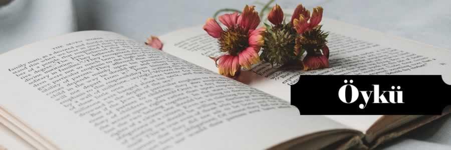 En İyi, Çok Satan, Okunan, Okunması Gereken, Güzel, Ünlü, Popüler, Ucuz, İndirimli, Yeni ve Son Çıkan Edebiyat Öykü Kitapları satın al