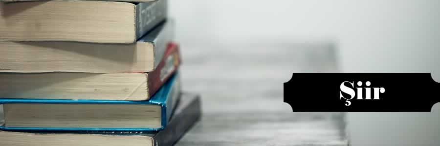 En İyi, Çok Satan, Okunan, Okunması Gereken, Güzel, Ünlü, Popüler, Ucuz, İndirimli, Yeni ve Son Çıkan Edebiyat Şiir Kitapları satın al